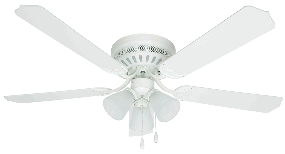 Havells Nicola Fans Online White Ceiling Fans With 3
