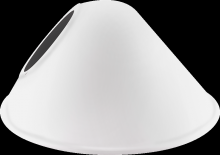 RAB Lighting GSACW - ANGLED CONE SHADE FOR GNLED GOOSENECK WHITE
